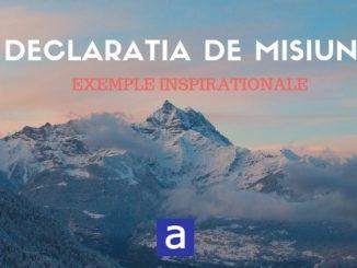 Declaratia De Misiune - Exemple Motivationale