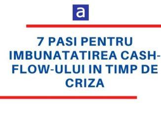 cashflow criza