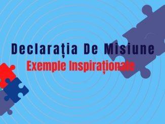 declratia de misiune exemple
